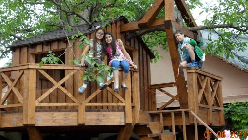 structura casa in copac asamblata cu placi multicui